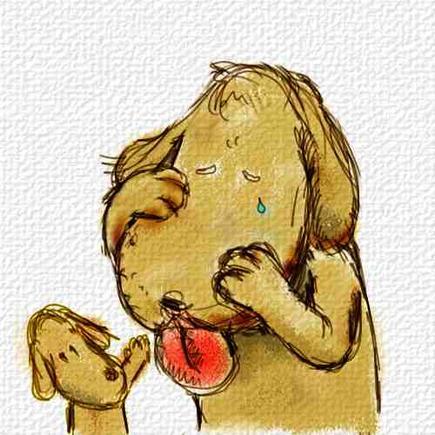 『犬の画像』の画像
