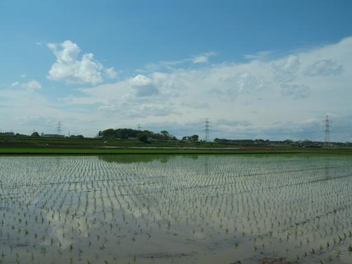 『境町の田園風景01』の画像
