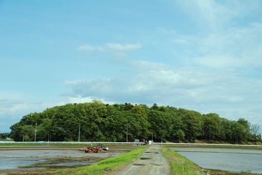 『境町の田園風景04』の画像