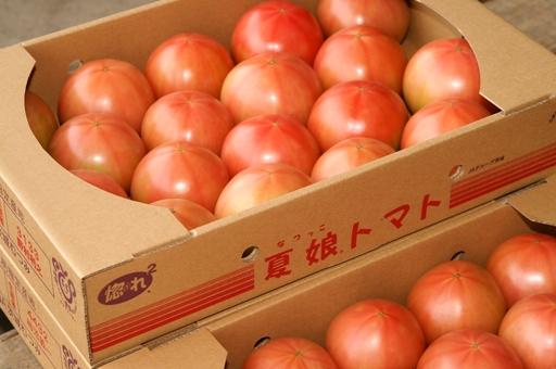 『トマト03』の画像