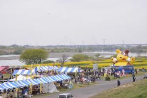 『『『菜の花フェスティバル001』の画像』の画像』の画像
